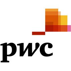 Firmafest underholding hos PWC